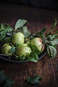 Green apples with leaves in a bowl