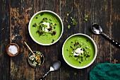 Grüne Gazpacho-Suppe mit Kresse