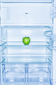 Apple in a fridge