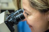 Pathologist using a microscope