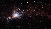 Orion A molecular cloud, VISTA image