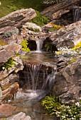 Alpine garden stream