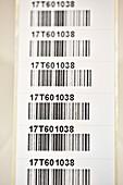 Pathology sample labels