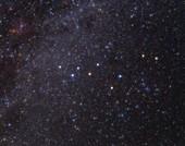 Lacerta constellation, optical image