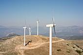 Windfarm, Peloponnese, Greece