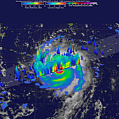 Hurricane Irma rainfall, 3D satellite image