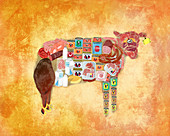 Illustration of cow with products over coloured background