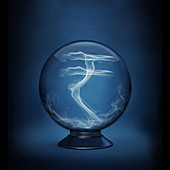 Illustration of rupee sign in crystal ball