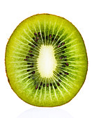 Kiwi against white background