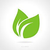 Green leaf, illustration