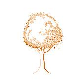 Tree, illustration