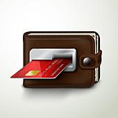 Online wallet, illustration