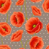 Red poppies, illustration