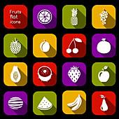 Fruit icons, illustration