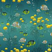 Fish, illustration