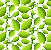 Limes, illustration