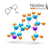 Nicotine molecule, illustration