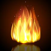 Campfire, illustration