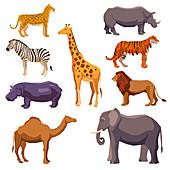 African animals, illustration