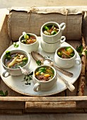 Winter soup with vegetables and beef