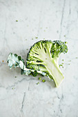 A broccoli floret on a marble surface