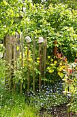 Staketenzaun aus Kastanienholz in frühsommerlichem Garten