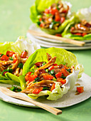 Hoisin chicken in lettuce leaves (Asia)