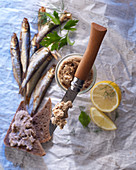 Mackerel rillette on an Opinel knife, with wholegrain bread, fresh mackerel, and lemon wedges