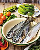 Raw mackerel in a bowl