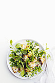 Pea salad with croutons, mint, pea shoots and pecorino