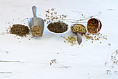 Various spices (umbellifers)