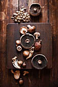Variety of mushrooms spread out vertically across warm wood butcher blocks