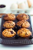 Dinkelmuffins mit Apfel und Brombeeren im Muffinblech