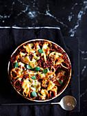 Paccheri mit Wurstragout und Mozzarella