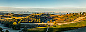 Panorama of Vineyards with Frosted Fields and Mountain Landscape at Sunrise, Dogliani, Piedmont, Italy