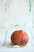 A Hokkaido pumpkin against a white wooden background