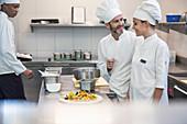 Köche arbeiten zusammen in einer Grossküche
