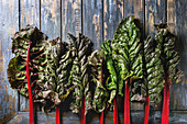 Leaves of fresh organic purple chard mangold over old wooden plank background