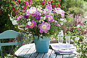 Paeonia 'Bowl of Beauty' ( Pfingstrosen ), Zweige von Deutzia magnifica