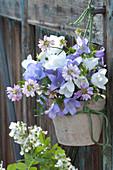 Kleiner Strauß aus Campanula ( Glockenblumen ) und Coronilla