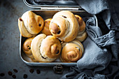 Vegan raisin buns in a tin box