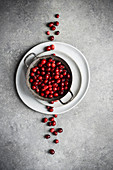 Metal bowl filled with cranberries on stack of plates