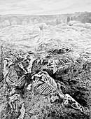 Nebraska ashfall fossils, illustration