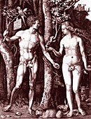 Adam and Eve, 1754 illustration