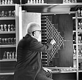 Russian-US geneticist Dobzhansky with fly maze, 1965