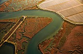 Marshes, aerial photograph