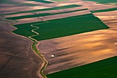 Arable farmland, Spain, aerial photograph