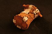 Prehistoric ritual leather object, Cova des Pas site