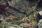 Bright Angel Trail, Grand Canyon, USA