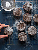 Chocolate chokecherry muffins with icing sugar on blue background